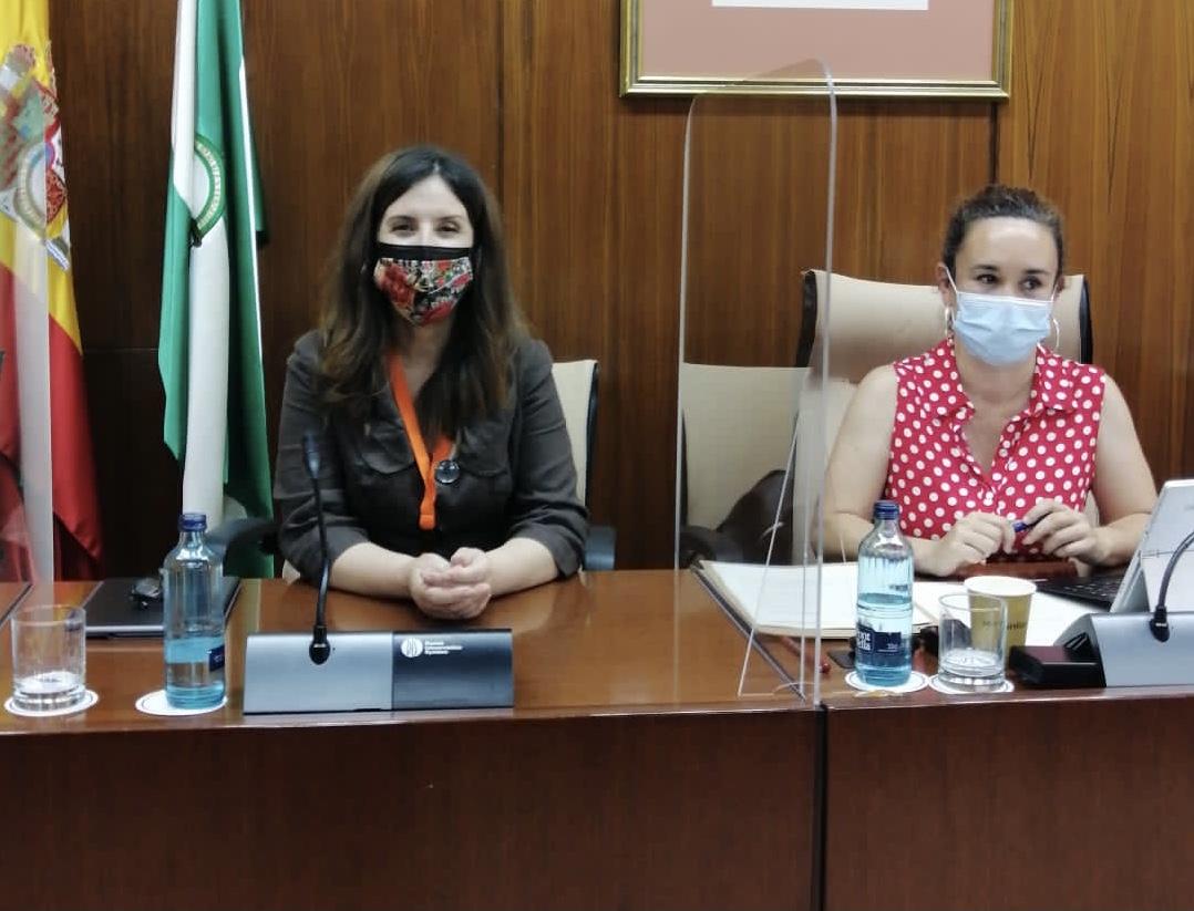 Presidenta de CODAPA comparece en la Comisión de Educación del Parlamento andaluz (17/05/2021)